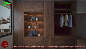 Tủ quần áo gỗ óc chó CT529n2