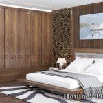 Tủ quần áo gỗ óc chó CT538